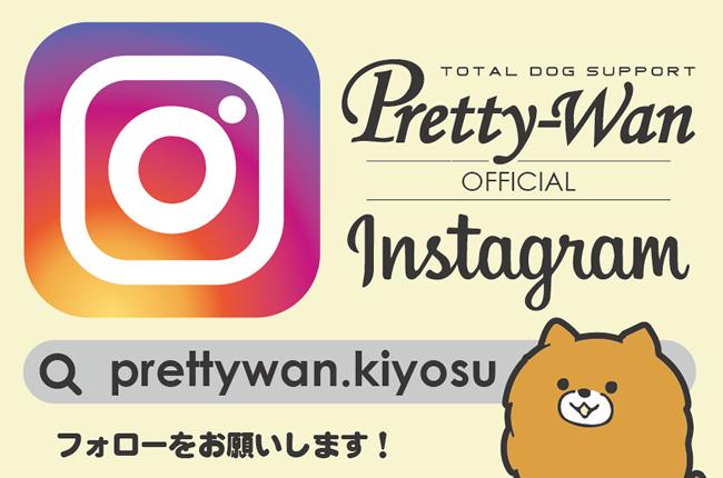 insta_prettywan